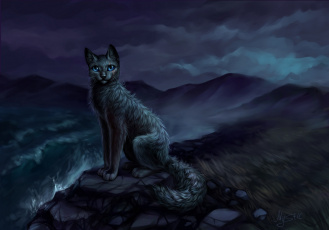 обоя рисованное, животные,  коты, кошка, водоем, камни, ночь
