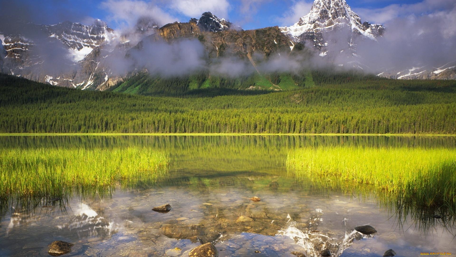 Горы зелень вода  № 657947 без смс