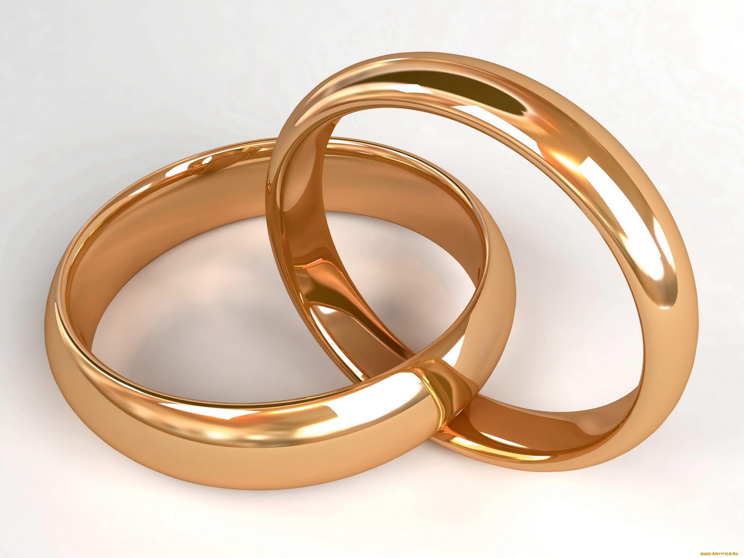 Обручальные кольца фото для открытки