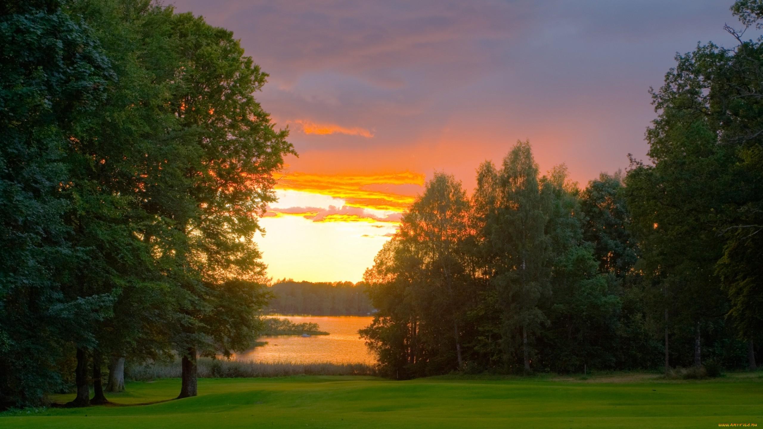 природа рассвет деревья  № 1158247 загрузить