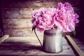 обоя цветы, пионы, доски, кувшин, букет