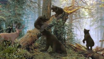 обоя рисованное, живопись, растения, олень, деревья, лесоповал, медведь