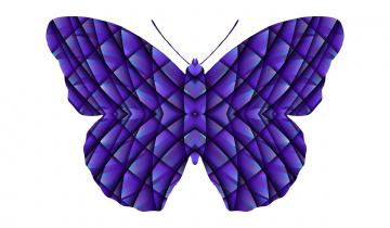 обоя векторная графика, животные , animals, бабочка, фон
