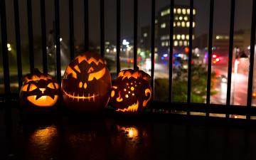 обоя праздничные, хэллоуин, halloween, ночь, тыквы