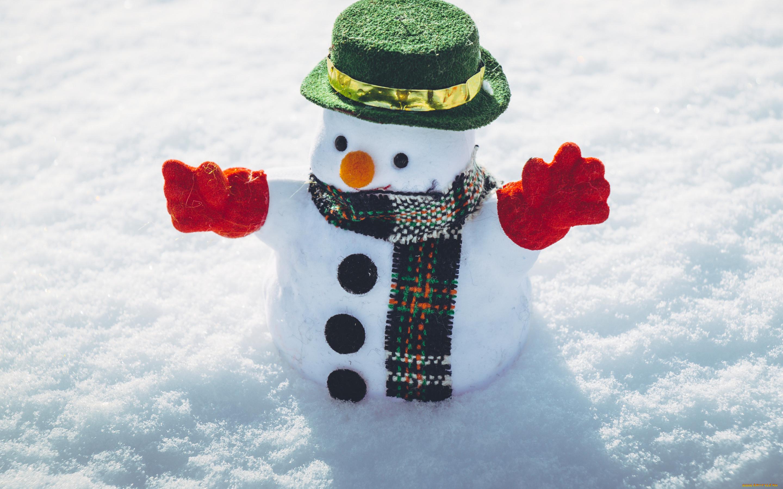 Алкоголь, доброе утро картинки прикольные снеговик