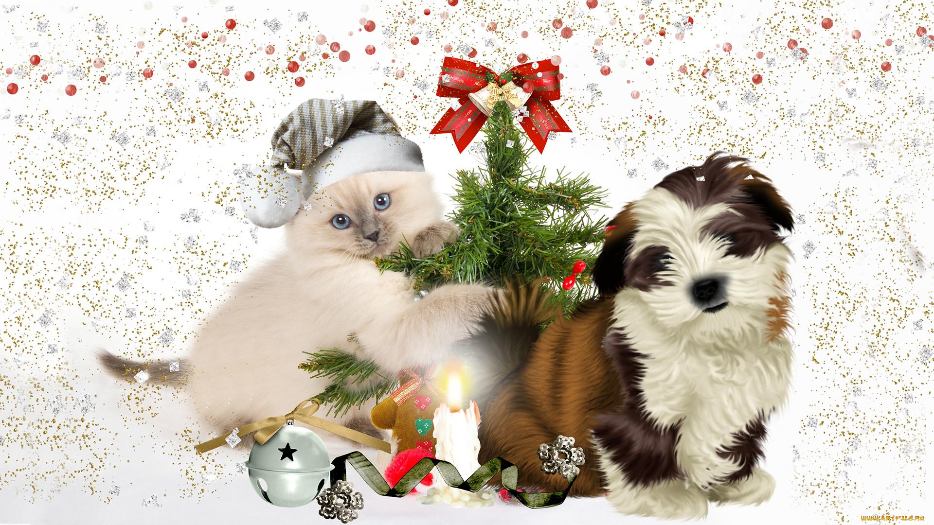 Открытка животные и новый год, тему обнять благодарю