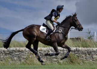 Картинка спорт конный+спорт лошадь жокей экипировка шлем препятствие