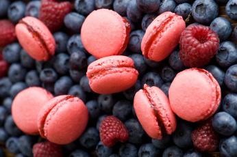 Картинка еда разное черника малина ягоды макарун