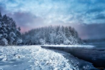 обоя природа, зима, лес, река
