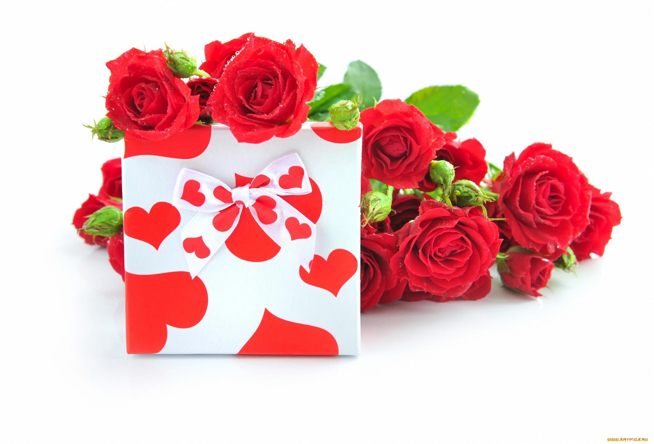 Сердечек фото, розы красные для открытки