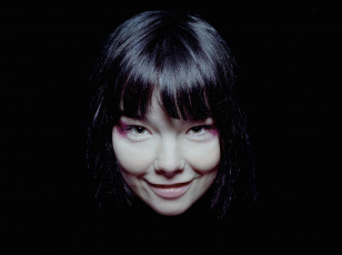 Картинка bjork музыка вокалистка композитор актриса исландия
