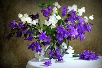 Картинка цветы колокольчики букет белый фиолетовый