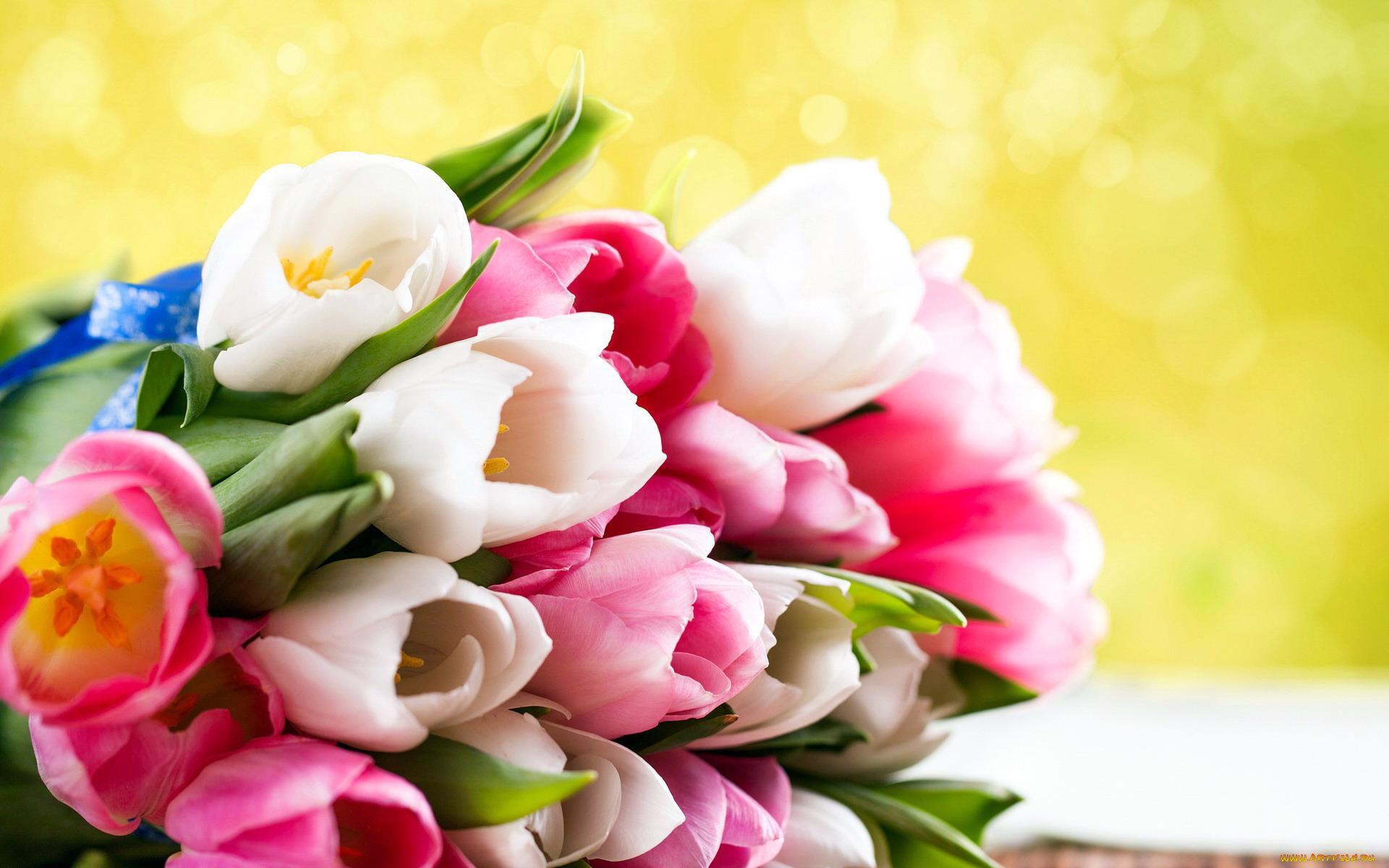 Открытки праздничные цветы