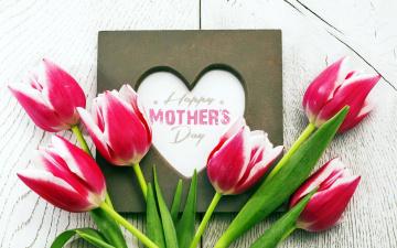 обоя праздничные, день матери, сердце, бутоны, надпись, тюльпаны, пожелание