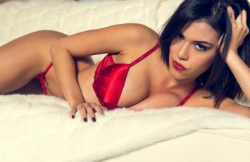 Картинка девушки -unsort+ брюнетки +шатенки мех взгляд фигура грудь бельё lingerie