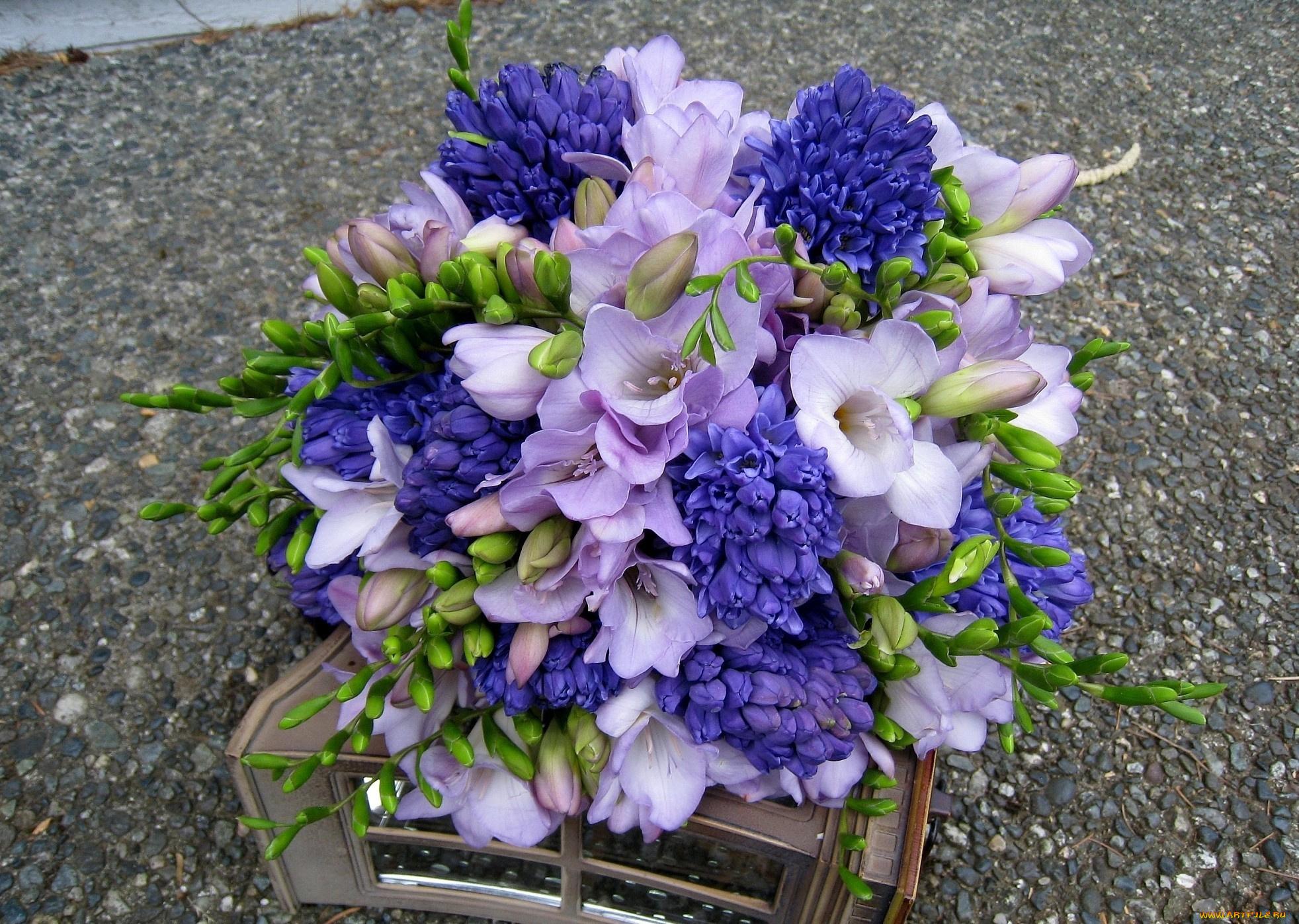 Цветы дом, букет с гиацинтом невеста