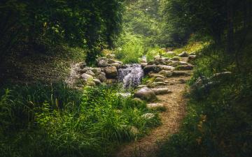 обоя природа, дороги, ручей, камни, деревья, парк, трава, зелень