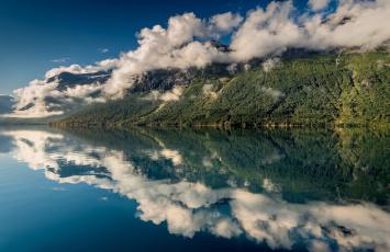 Картинка природа побережье облака лес горы