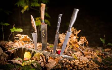 Картинка оружие холодное листья ножи