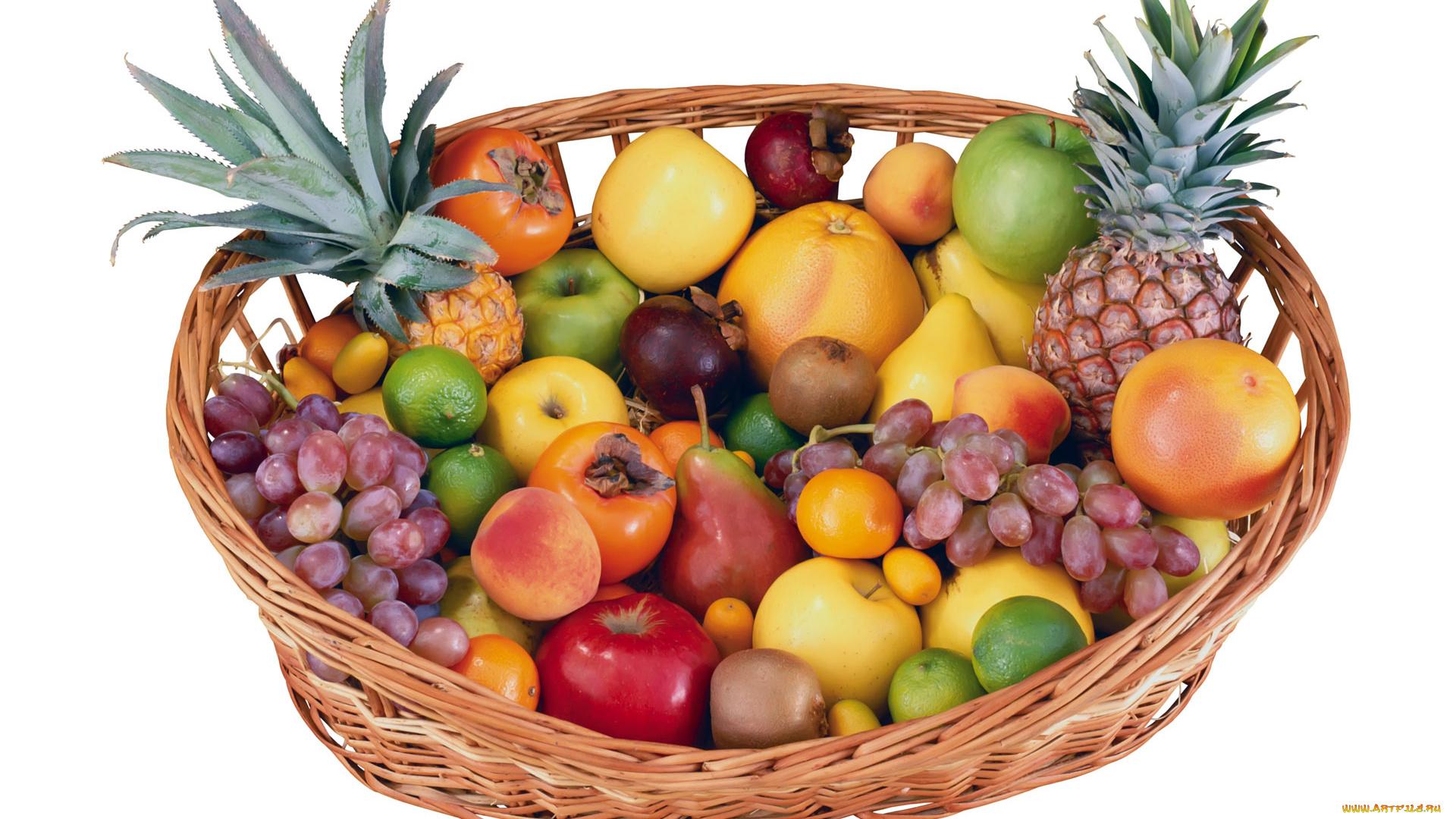 Днем, много фруктов картинки для детей