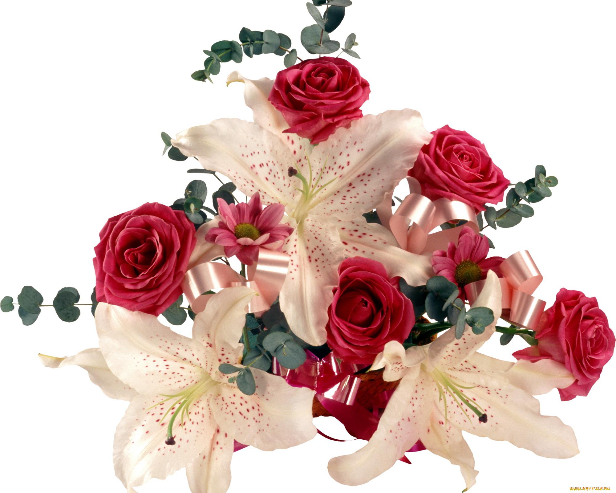 Цветы фото красивые картинки анимация