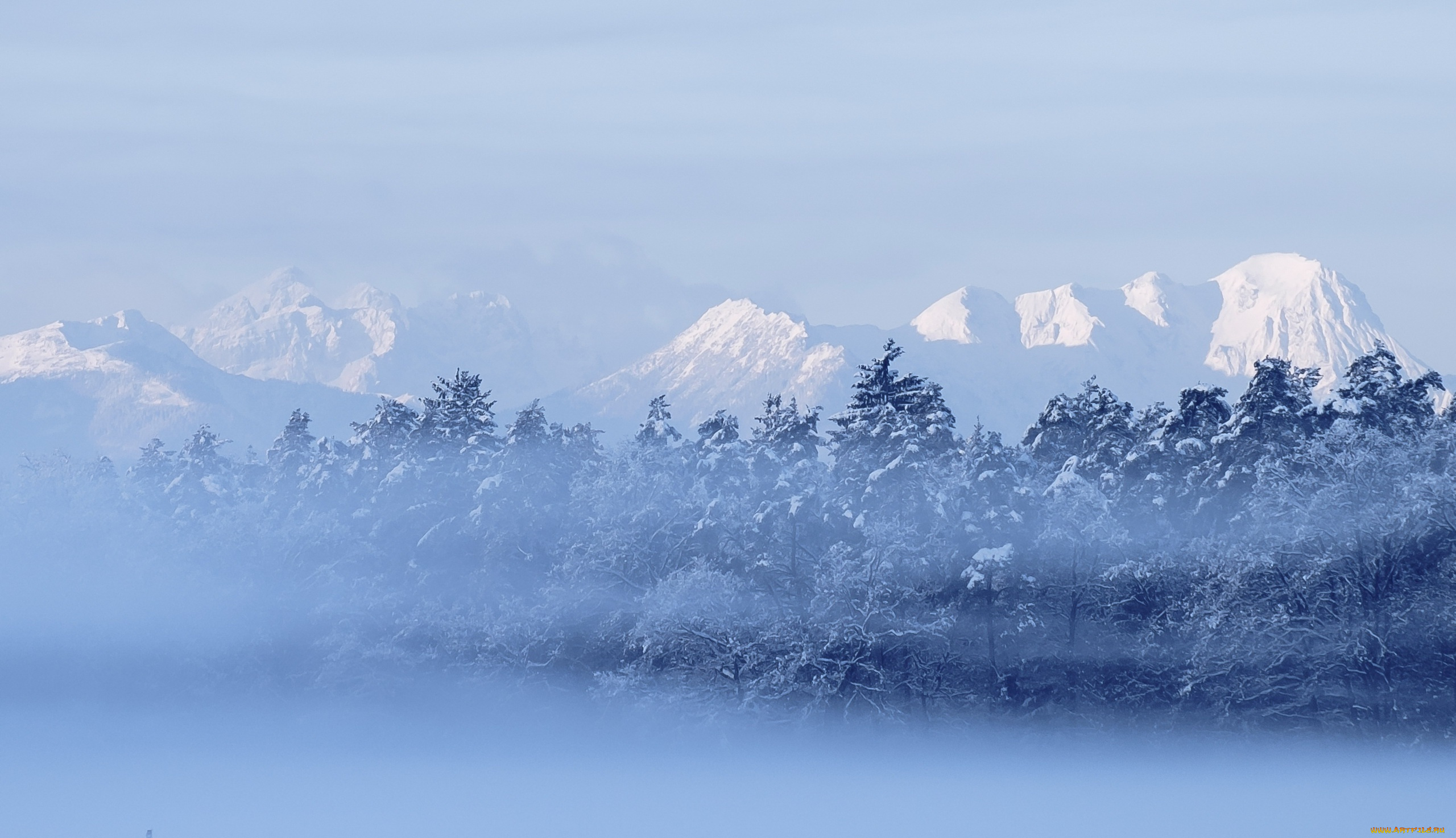 снег горы туман snow mountains fog  № 1146755 загрузить