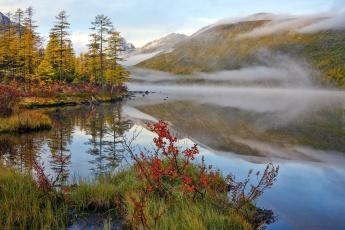 обоя природа, реки, озера, осень, река, туман
