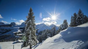 обоя природа, зима, рассвет