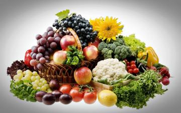 обоя еда, фрукты и овощи вместе, яблоки, виноград, сливы, редис, капуста, помидоры