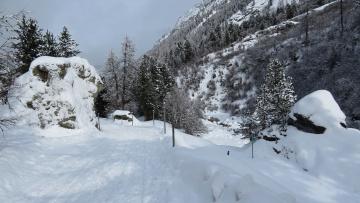 обоя природа, горы, лес, снег