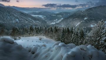обоя природа, горы, снег, лес