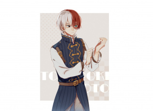Картинка аниме boku+no+hero+academia todoroki shouto