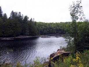обоя природа, реки, озера, лето, река, деревья