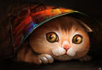 Картинка рисованные животные коты кот кошка ryuuka-nagare морда
