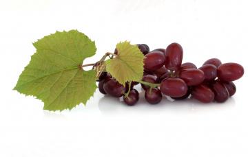 Картинка еда виноград