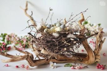Картинка праздничные пасха гнездо