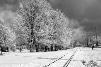 обоя природа, зима, снег, иней, деревья