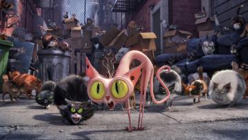 обоя мультфильмы, the secret life of pets, персонаж