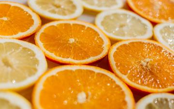 обоя еда, цитрусы, апельсин, лимон