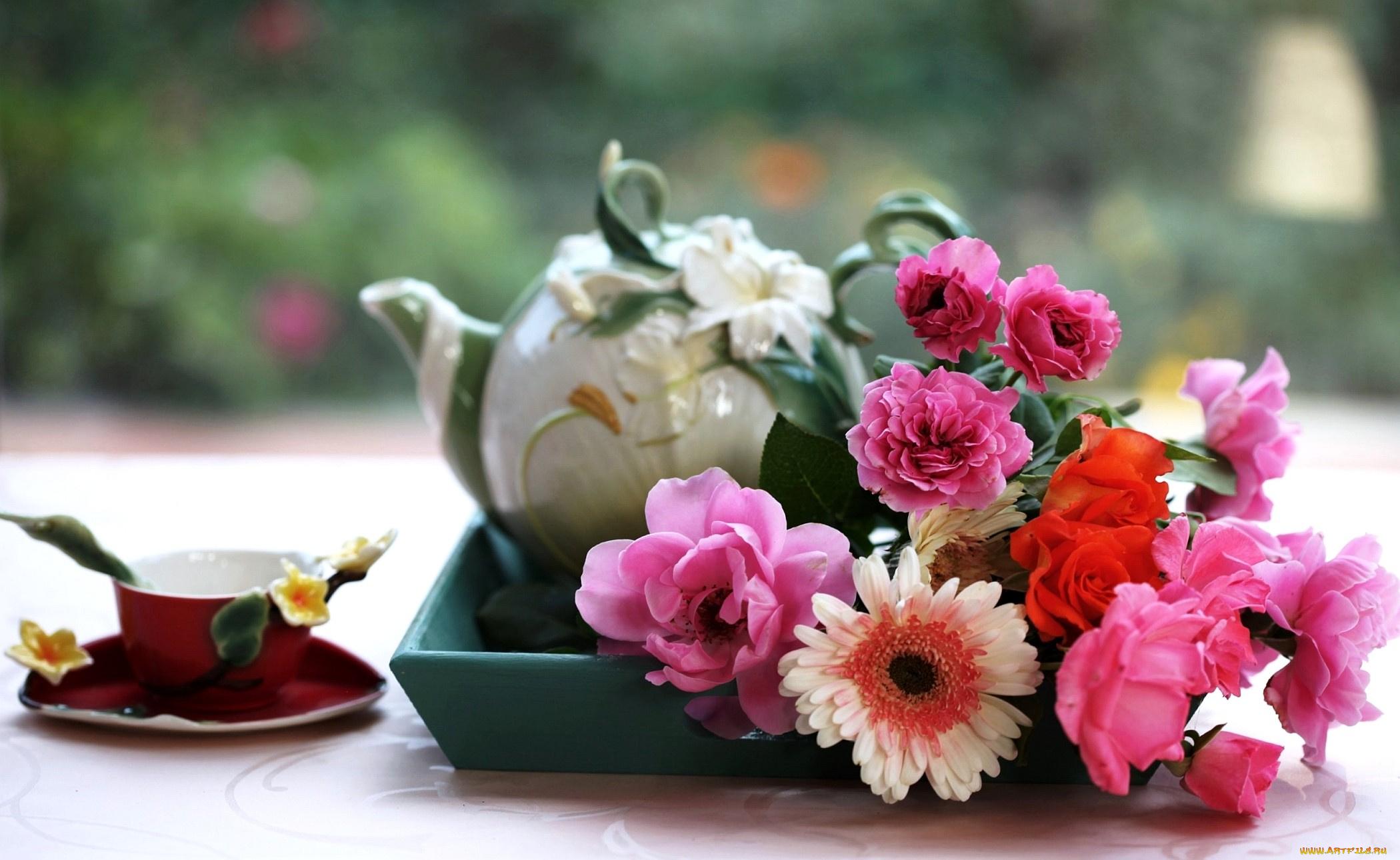 нежные розы в стаканах скачать