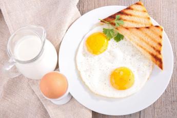 Картинка еда Яичные+блюда завтрак хлеб яйца молоко зелень breakfast bread eggs milk greens
