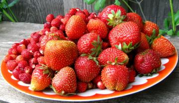 Картинка еда клубника +земляника ягоды
