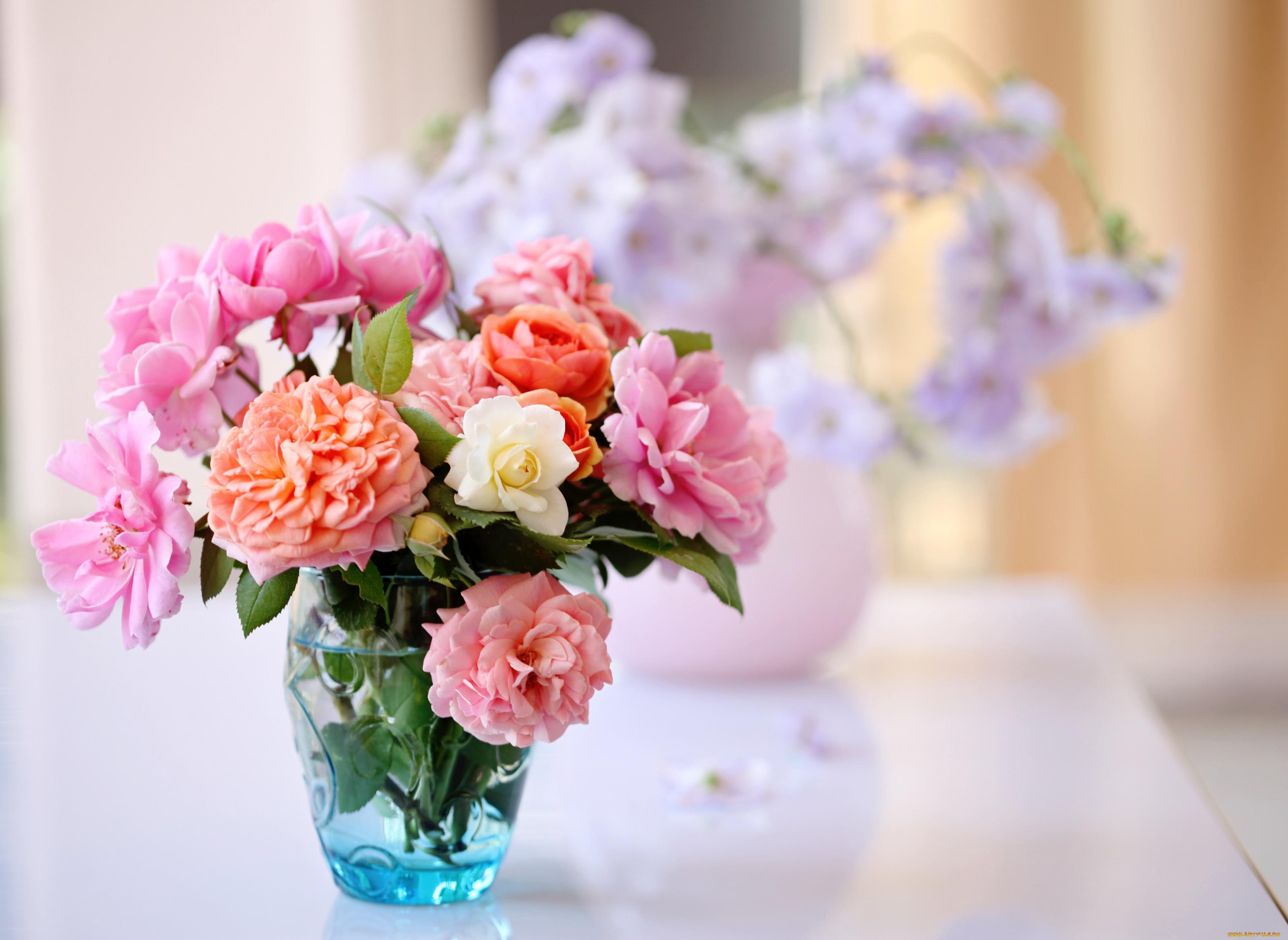Открытки фото с цветами для блогов, надписью прекрасного