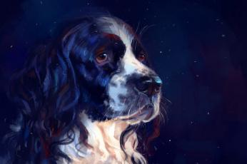 обоя рисованное, животные,  собаки, синий, фон