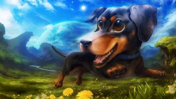 обоя рисованное, животные,  собаки, небо, холмы, трава, одуванчик