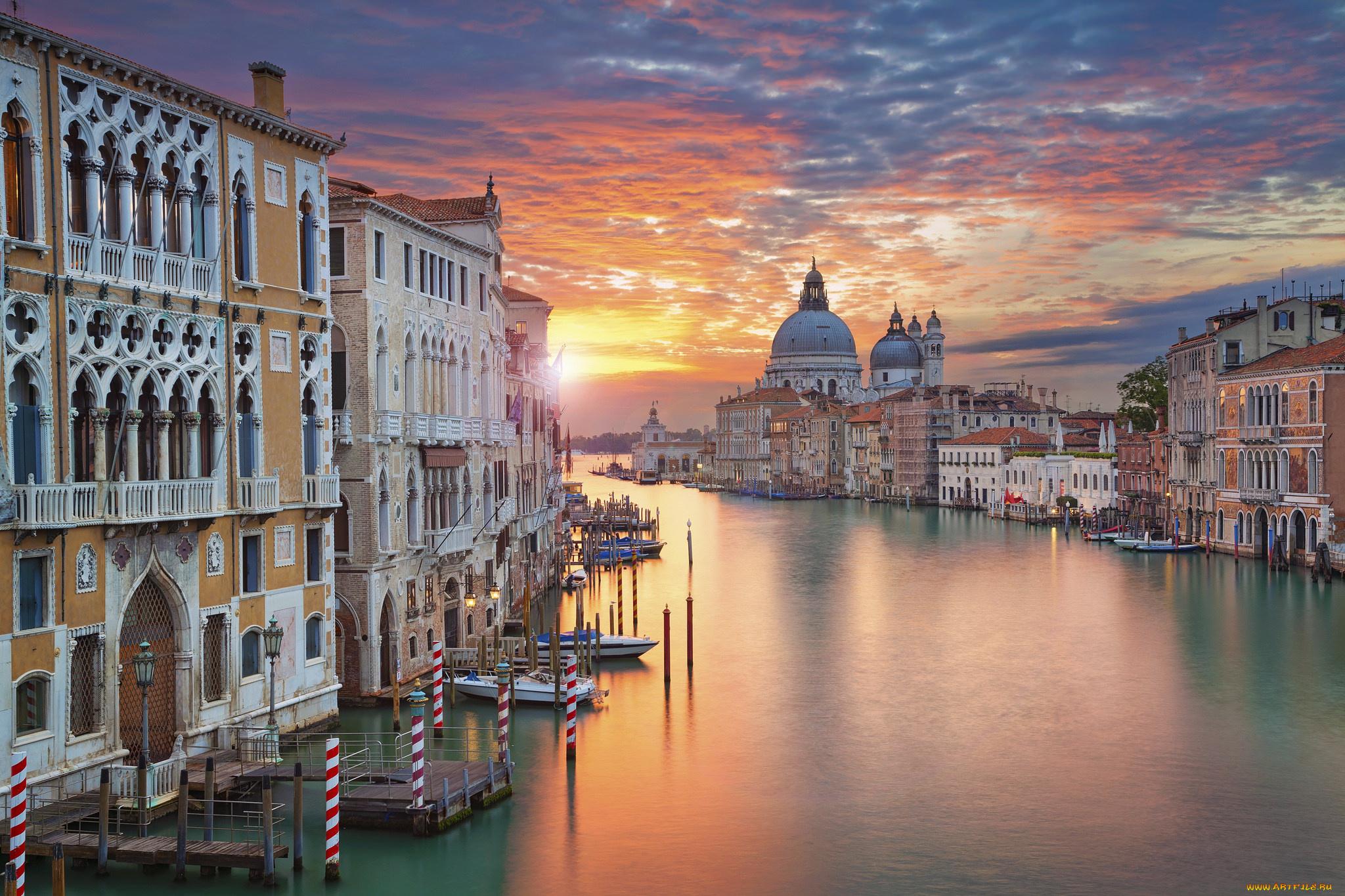 Ветки, красивые картинки фотки венеция