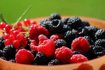 обоя еда, фрукты,  ягоды, витамины, ассорти, ягоды, чёрная, малина, природа, лето, красота, красная, смородина, контровый, свет, дача, вкусно