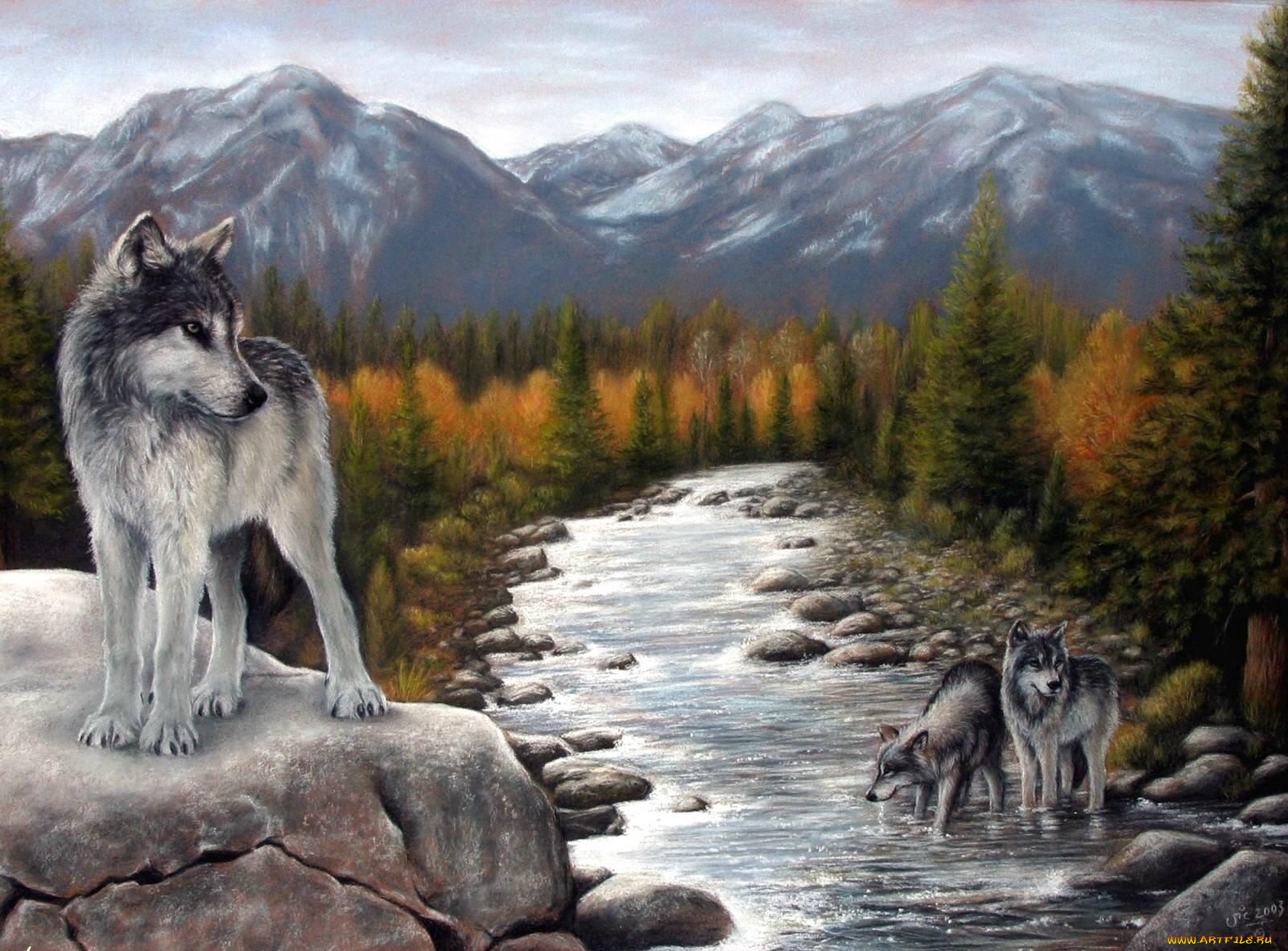 Красивые волки картинки с надписями, разведчика поздравления картинки