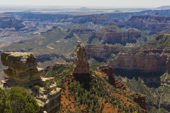 Картинка grand canyon national park arizona природа горы ели