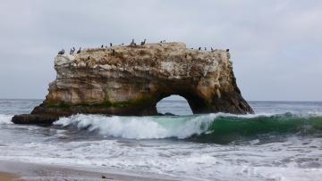 Картинка природа побережье пейзаж